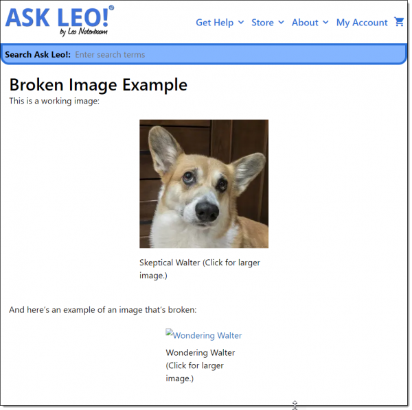 Ask Leo! Page with an example broken image.